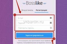 Как накрутить лайки Вконтакте быстро и бесплатно