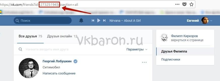 Как посмотреть скрытую страницу в ВКонтакте 1