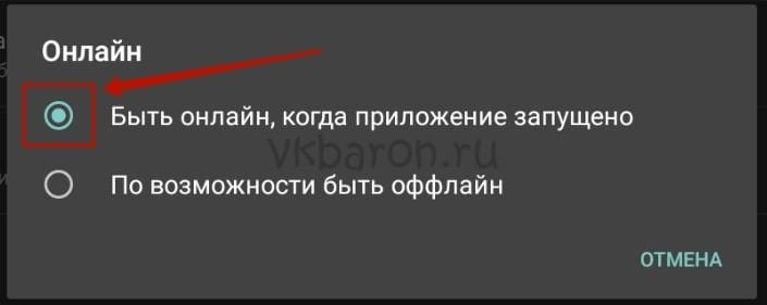 Как сделать вечный онлайн в ВКонтакте 12-min