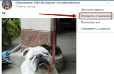 Как посмотреть закладки в ВКонтакте с компьютера